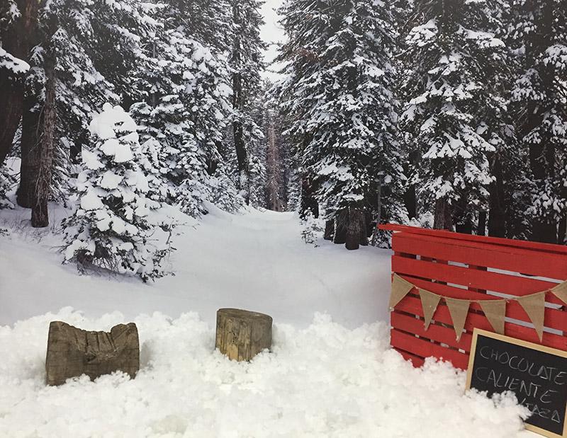 fondo de vinilo de bosque nevado